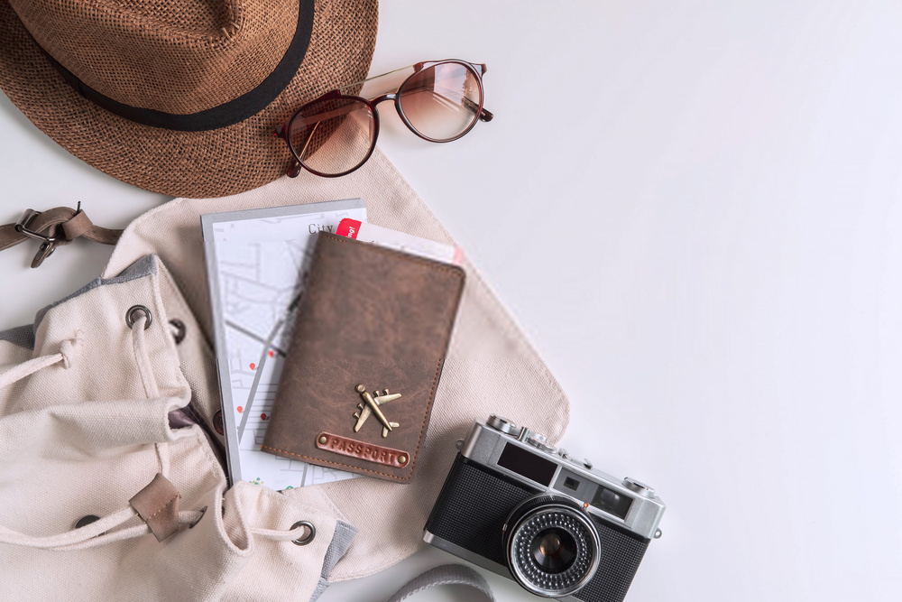 Travel Professional Plans For Your Journey